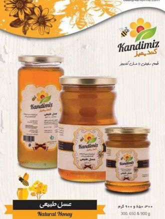 شهد عسل طبیعی (۳۰۰ گرم) کندیمیز