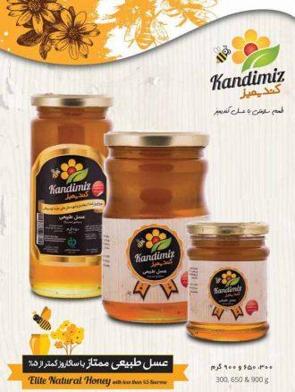 شهد عسل ممتاز (۳۰۰ گرم) کندیمیز